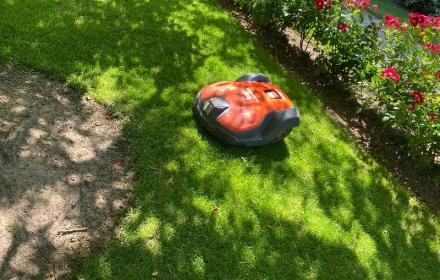 Fatigué de tondre votre pelouse : optez pour la location de robot de tonte